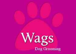 Wags Dog Grooming
